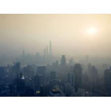 Nghiên cứu mới cho thấy ô nhiễm không khí gây ra xơ vữa động mạch