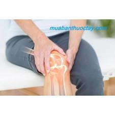 Dịch khớp đóng vai trò quan trọng trong đau xương khớp