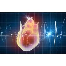 Rối loạn nhịp tim do đâu